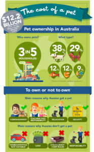 the cost of pet in australia infographics