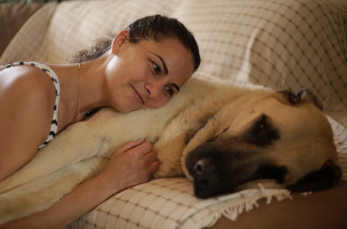 Caroline Zambrano and Cruz Anatolian Shepherd