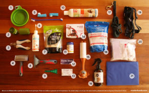 Dog's first aid kit, grooming, health and beauty