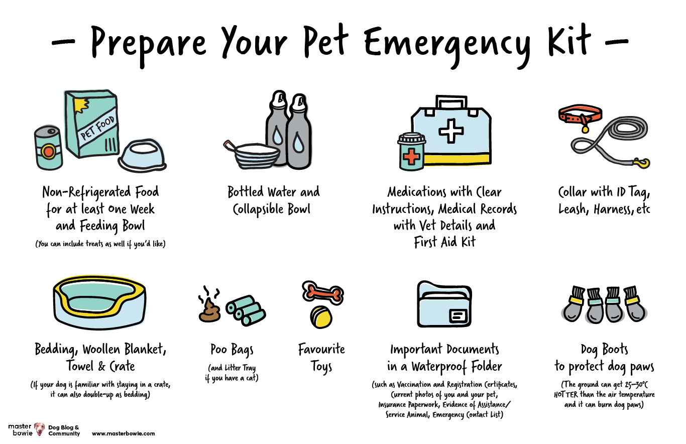 Prepare Your Pet Emergency Kit Master