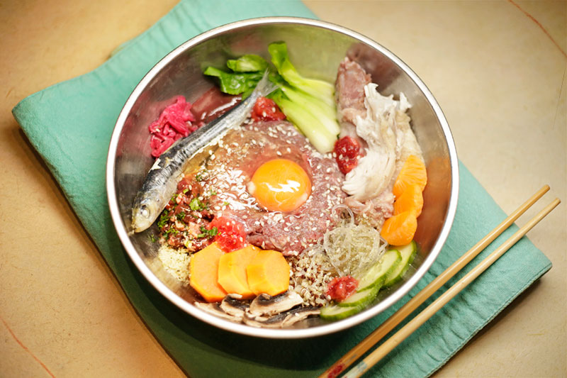 Dog friendly raw feeding korean inspired bibimbap