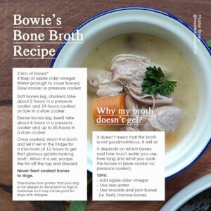 Bone broth for dogs recipe by Master Bowie
